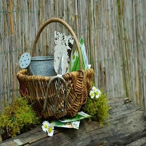 gardening gift sets
